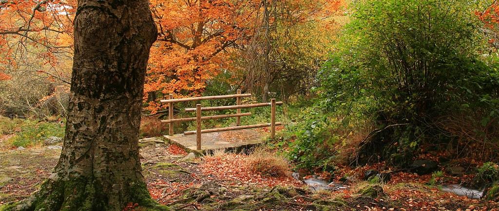 El Moncayo en otoño